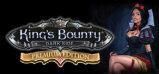 King's Bounty: Dark Side Premium Edition