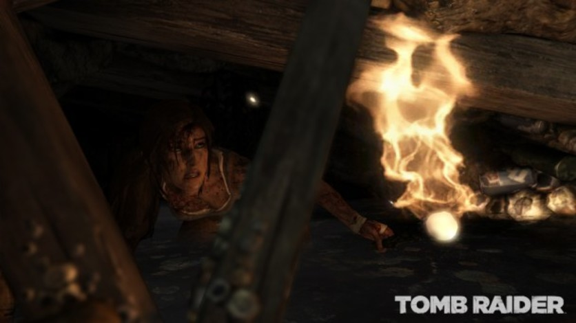 Screenshot 5 - Tomb Raider Survival Edition