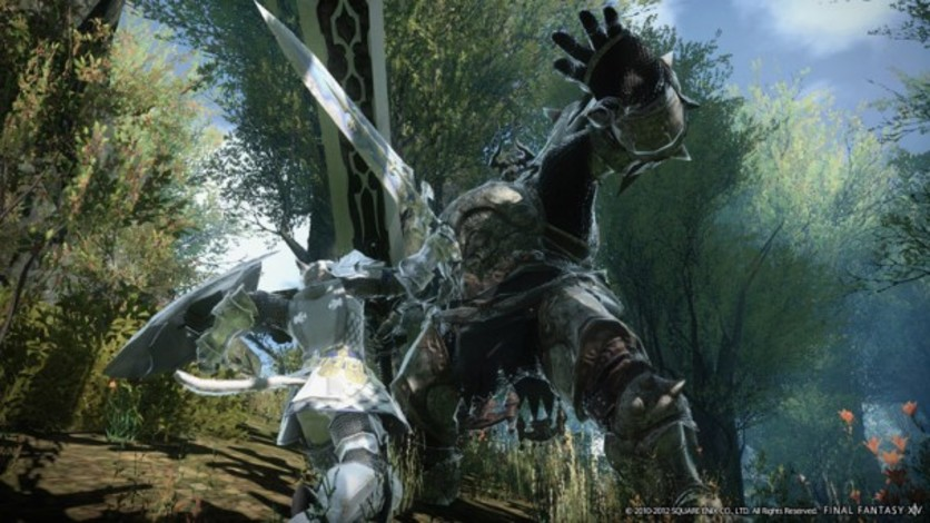 Screenshot 8 - FINAL FANTASY XIV: A Realm Reborn