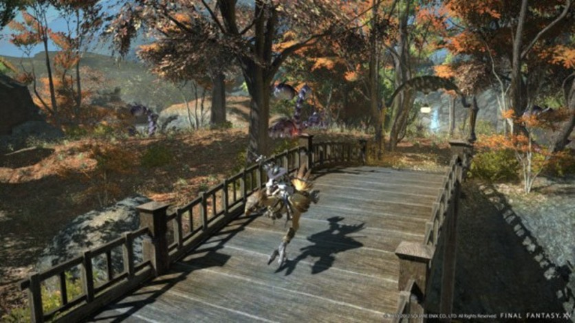 Screenshot 9 - FINAL FANTASY XIV: A Realm Reborn Digital Collector's Edition