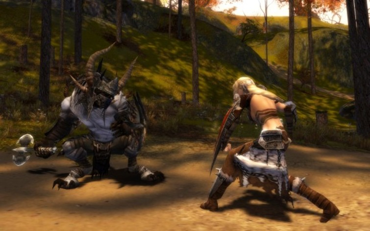 Screenshot 5 - Guild Wars Platinum Edition
