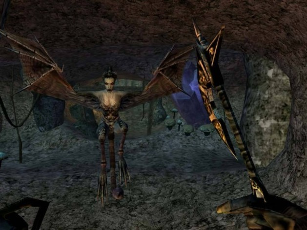 Screenshot 3 - The Elder Scrolls III: Morrowind GOTY Edition