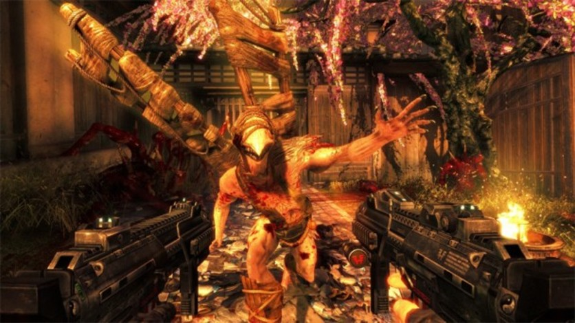 Screenshot 3 - Shadow Warrior
