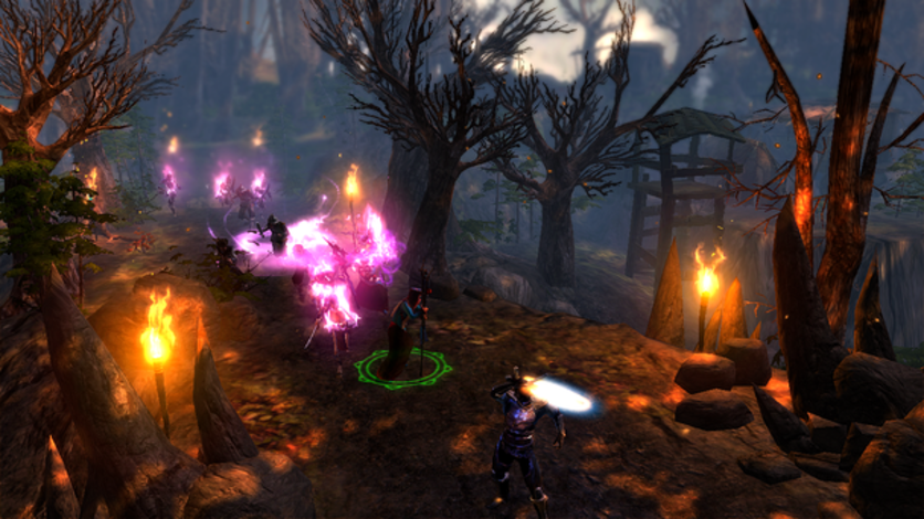 Screenshot 6 - Dungeon Siege III