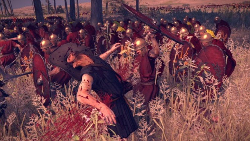 Screenshot 5 - Total War: ROME II - Blood & Gore Pack