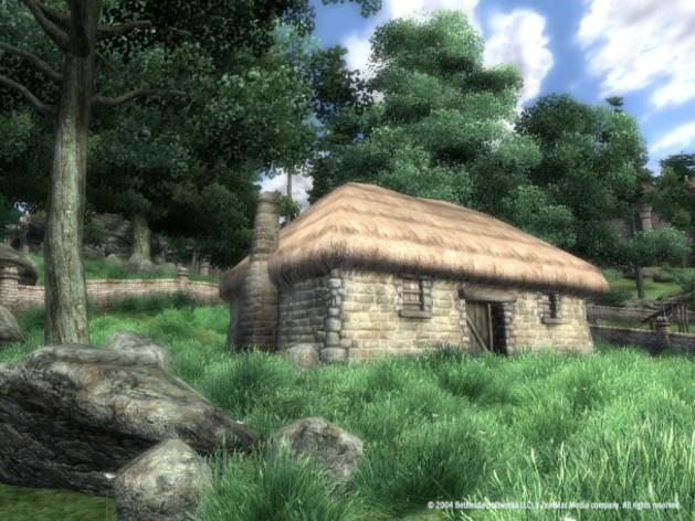 Screenshot 2 - The Elder Scrolls IV: Oblivion® GOTY Edition