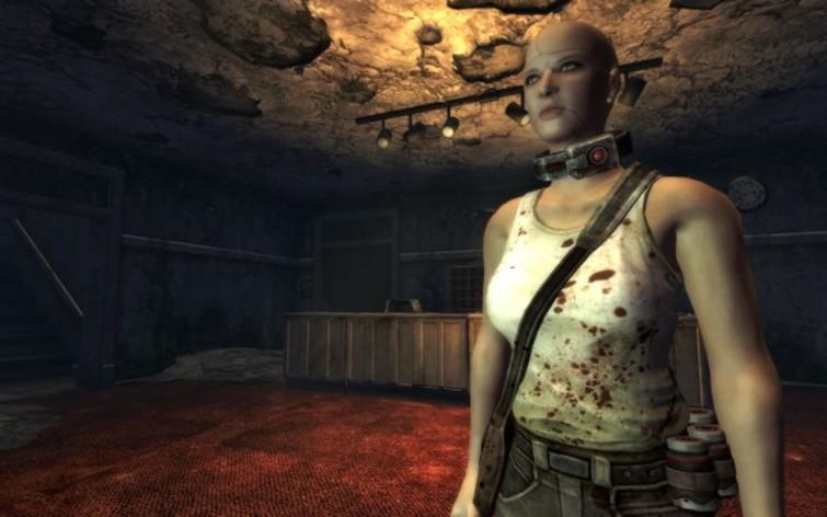 Screenshot 3 - Fallout: New Vegas - Dead Money