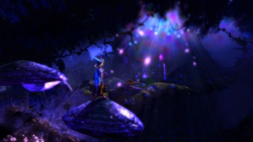 Screenshot 2 - Trine 2