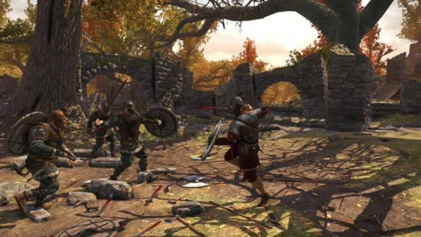 Screenshot 6 - War of the Vikings - Blood Eagle Edition