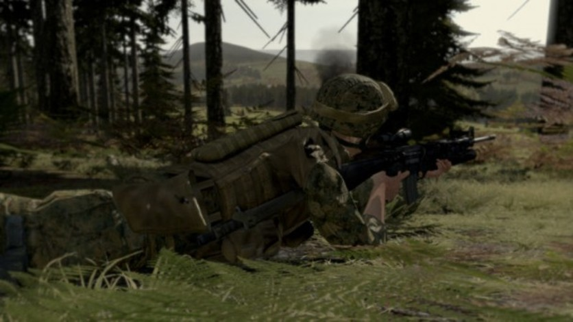 Screenshot 3 - Arma II