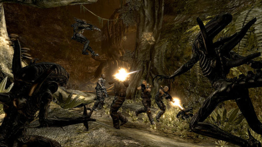 Screenshot 5 - Aliens vs Predator Collection