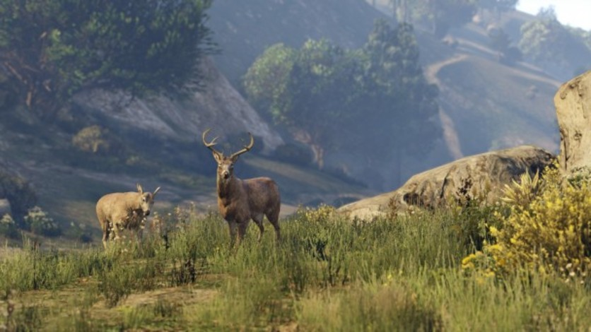Screenshot 39 - Grand Theft Auto V