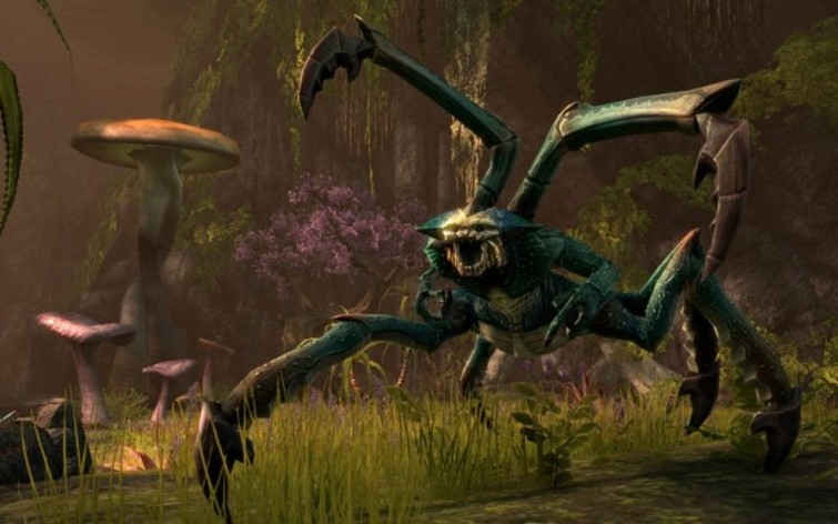 Screenshot 8 - The Elder Scrolls Online Standard Edition