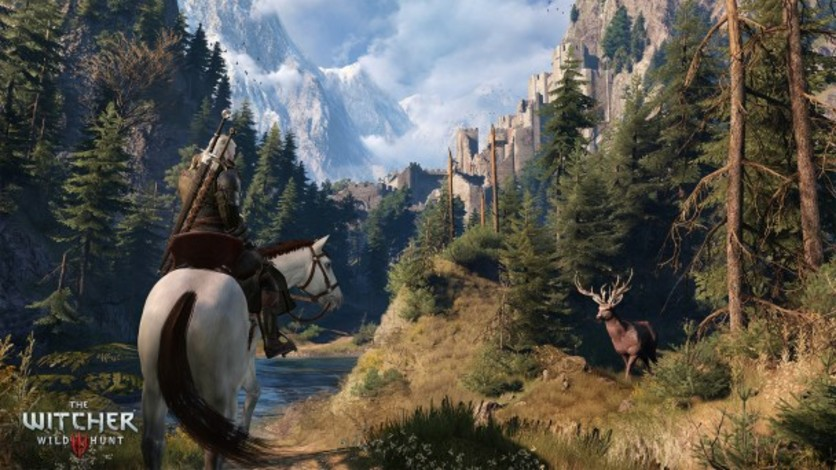 Screenshot 4 - The Witcher 3: Wild Hunt - Expansion Pass
