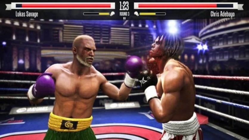 Screenshot 8 - Real Boxing