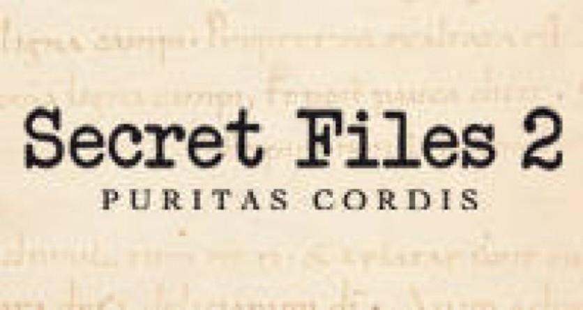 Screenshot 3 - Secret Files 2: Puritas Cordis