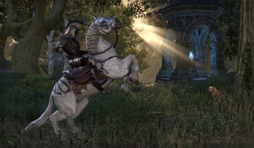 Screenshot 9 - The Elder Scrolls Online: Tamriel Unlimited