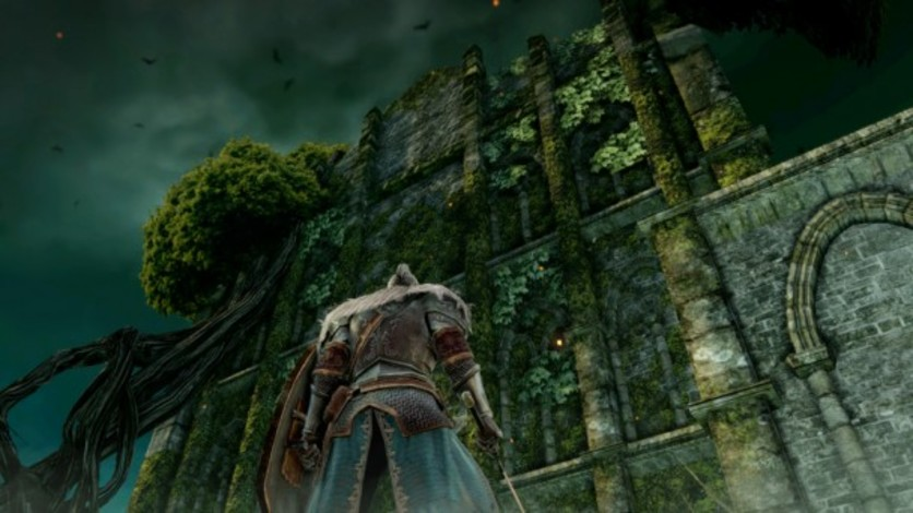 Screenshot 7 - Dark Souls II: Bundle