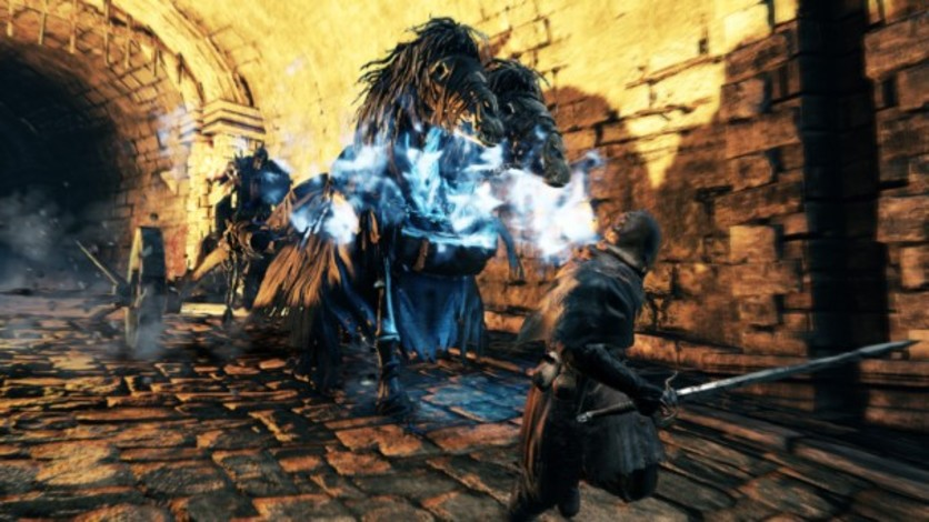 Screenshot 18 - Dark Souls II: Bundle