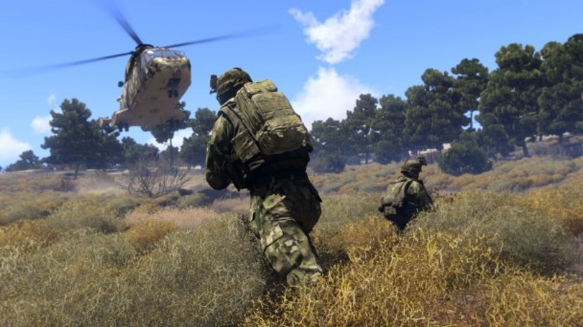 Screenshot 13 - Arma 3