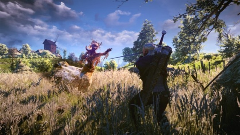 Screenshot 21 - The Witcher 3: Wild Hunt