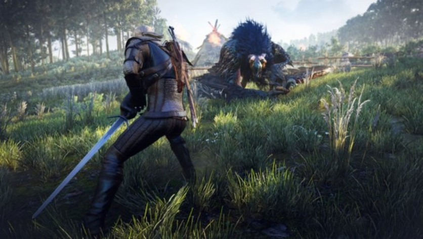 Screenshot 30 - The Witcher 3: Wild Hunt