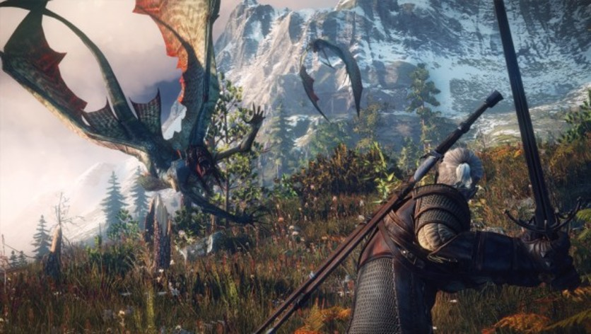 Screenshot 13 - The Witcher 3: Wild Hunt