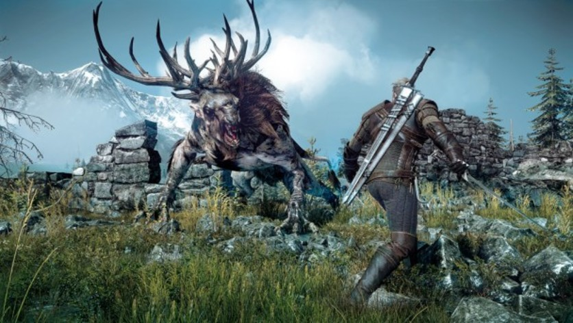 Screenshot 11 - The Witcher 3: Wild Hunt