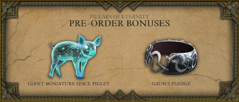 Screenshot 11 - Pillars of Eternity Royal Edition