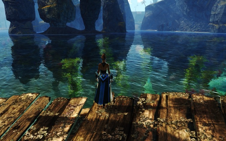 Screenshot 4 - Guild Wars 2