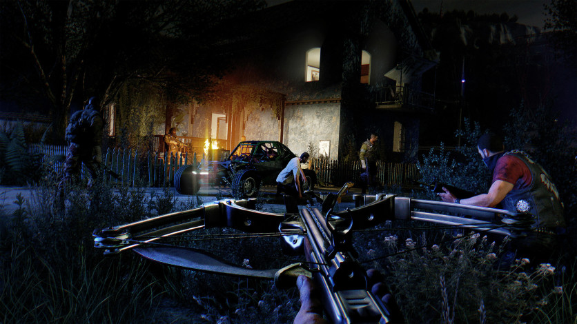 Screenshot 3 - Dying Light: The Following