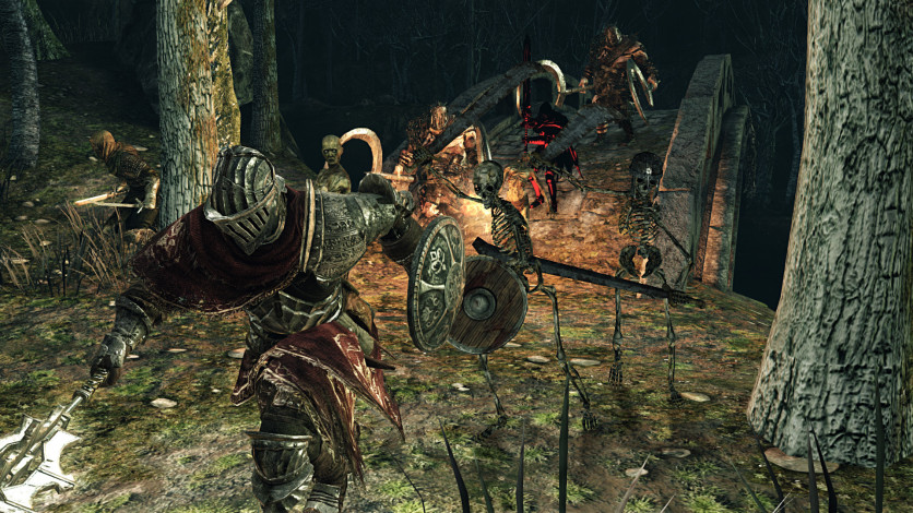 Screenshot 9 - DARK SOULS II: Scholar of the First Sin