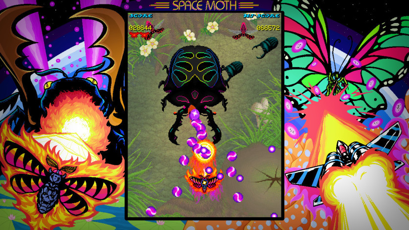 Screenshot 5 - Space Moth DX