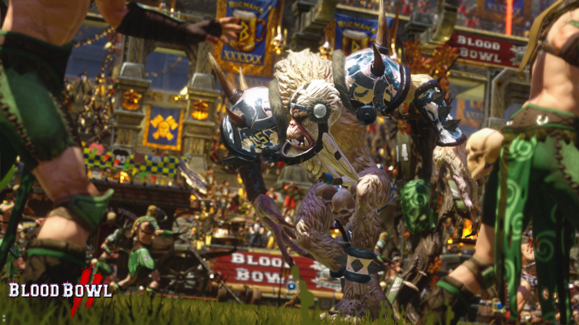 Screenshot 3 - Blood Bowl 2 - Norse