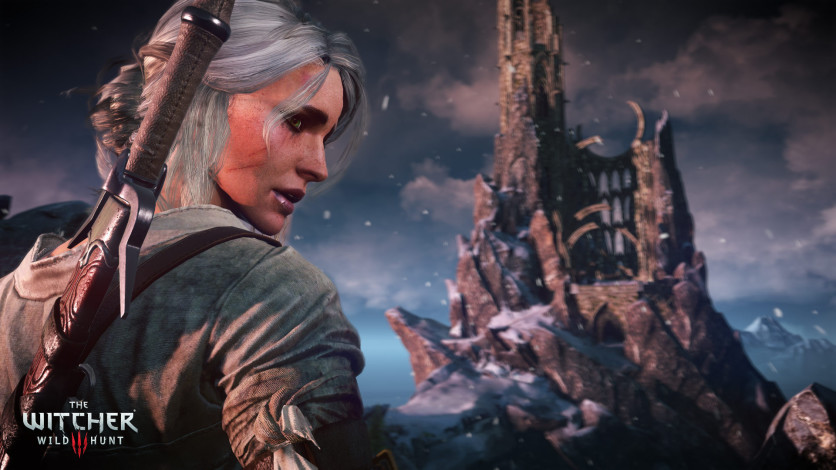 Screenshot 14 - The Witcher 3: Wild Hunt – Game of the Year Edition
