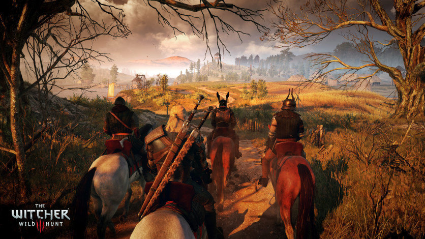 Screenshot 8 - The Witcher 3: Wild Hunt – Game of the Year Edition