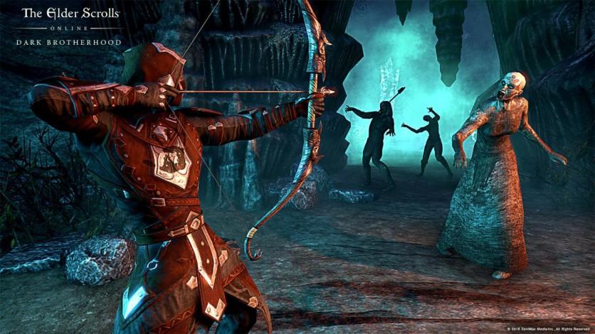 Screenshot 11 - The Elder Scrolls Online: Gold Edition