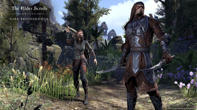Screenshot 3 - The Elder Scrolls Online: Gold Edition