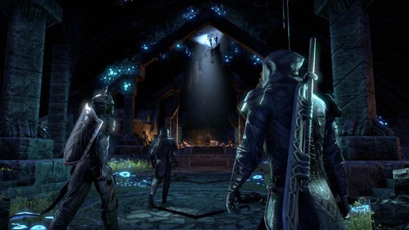 Screenshot 17 - The Elder Scrolls Online: Gold Edition