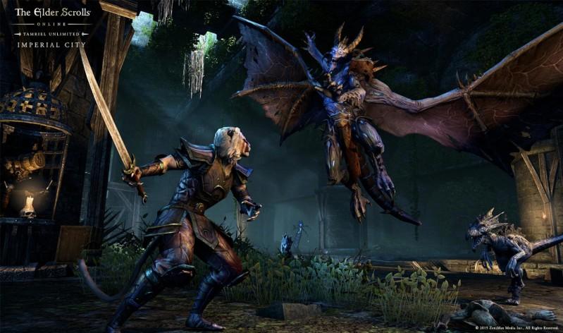 Screenshot 5 - The Elder Scrolls Online: Gold Edition