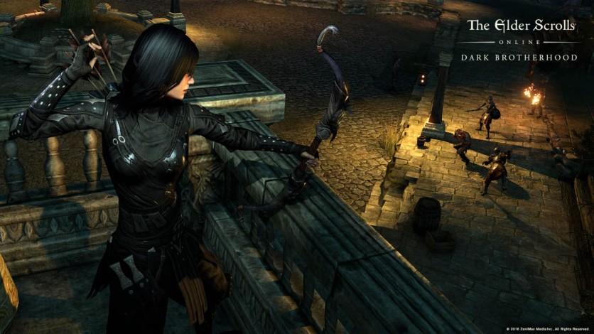 Screenshot 23 - The Elder Scrolls Online: Gold Edition