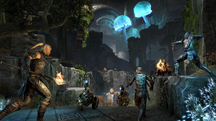 Screenshot 15 - The Elder Scrolls Online: Gold Edition