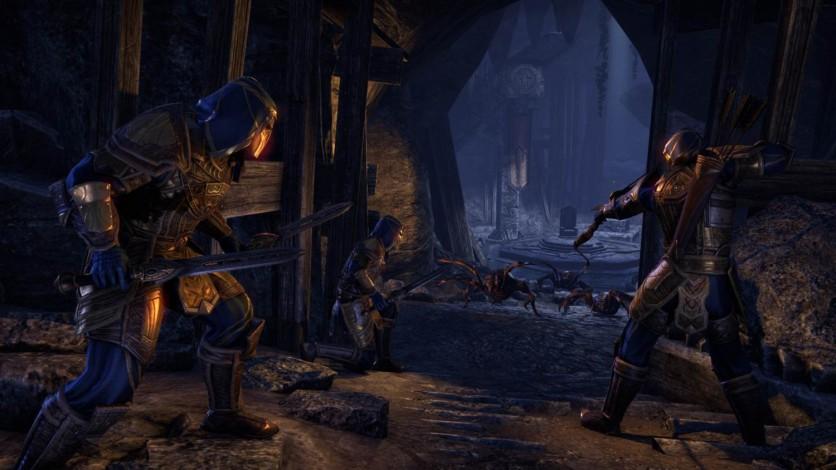 Screenshot 18 - The Elder Scrolls Online: Gold Edition