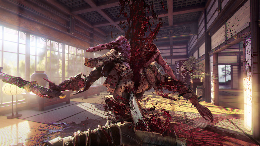 Screenshot 3 - Shadow Warrior 2