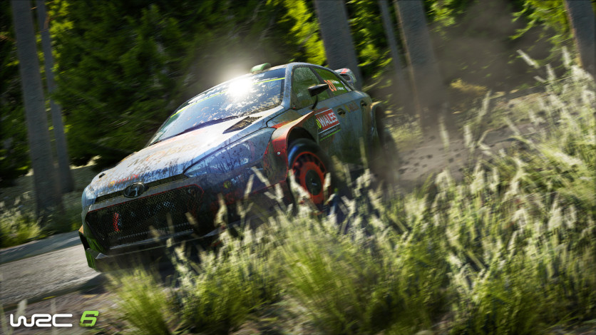 Screenshot 6 - WRC 6: World Rally Championship