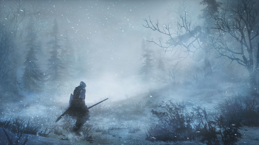Screenshot 6 - DARK SOULS III - Ashes of Ariandel