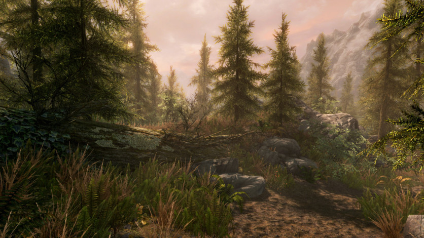 Screenshot 7 - The Elder Scrolls V Skyrim: Special Edition