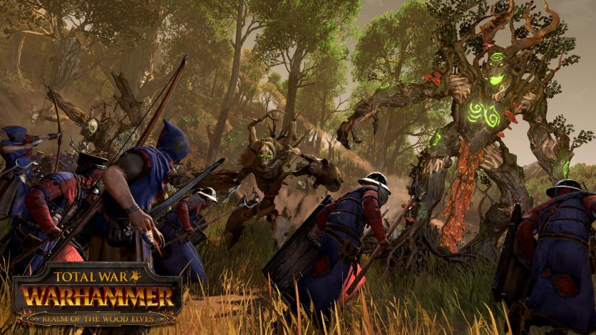 Screenshot 2 - Total War: WARHAMMER - Realm of The Wood Elves