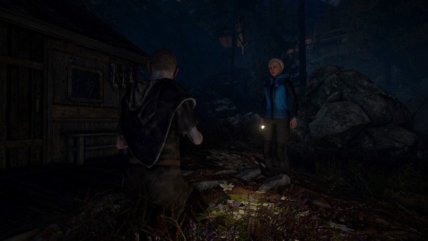 Screenshot 10 - Through the Woods