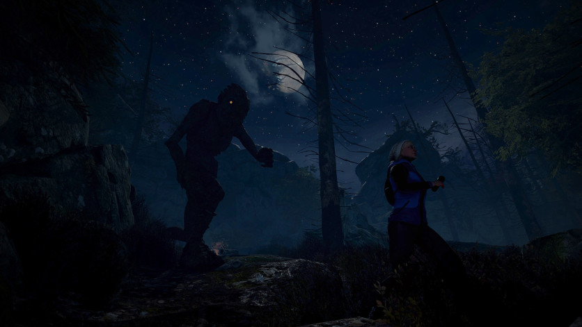Screenshot 6 - Through the Woods